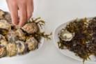 As ostras de Célia Rodrigues.