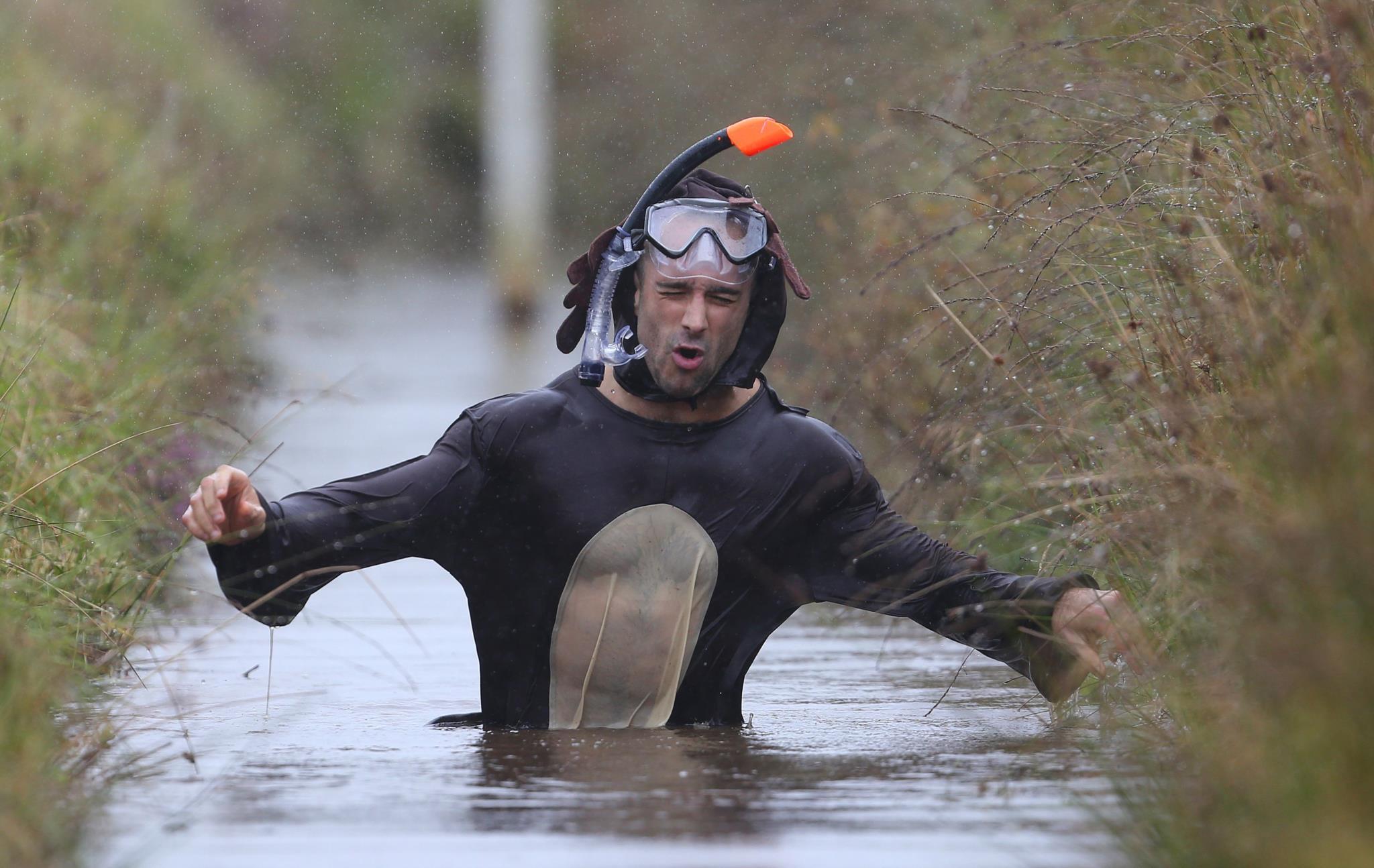 O mais rápido do pântano