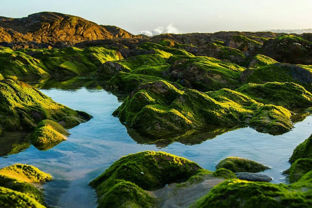 João D. Polónio (@jdpolonio) transportou-nos até São Torpes (Sines) que é um dos muitos paraísos do litoral alentejano. Esta praia possui um extenso areal de areias finas e claras, com águas quentes procuradas por surfistas.