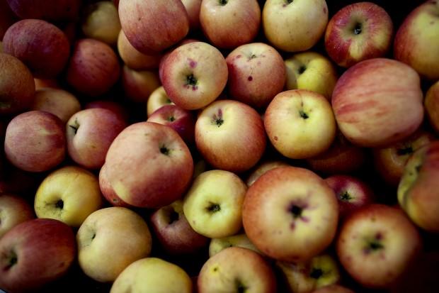 Sete em cada dez crianças portuguesas consomem quantidade insuficiente de fruta
