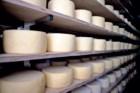 O queijo São Jorge DOP é uma obra-prima mas um dos melhores é novinho, só com três ou quatro meses