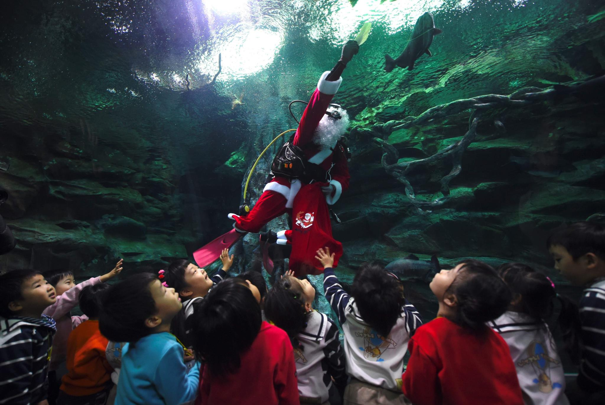 Lotte World Aquarium em Seul, Coreia do Sul
