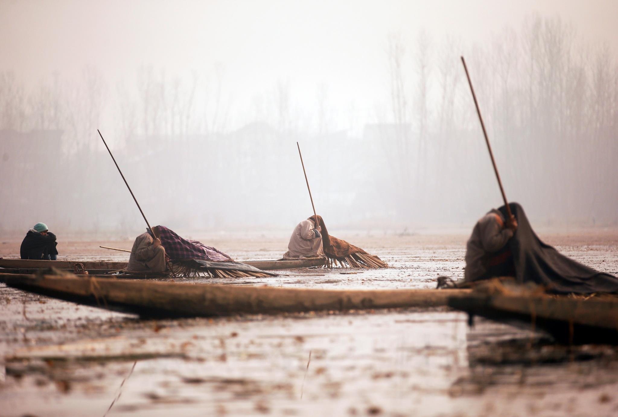Pescadores cobrem o seu corpo e parte do barco com cobertores e palha enquanto esperam que os peixes apareçam, em Srinagar, Índia