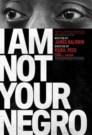 I am Not Your Negro - Eu Não Sou o Teu Negro