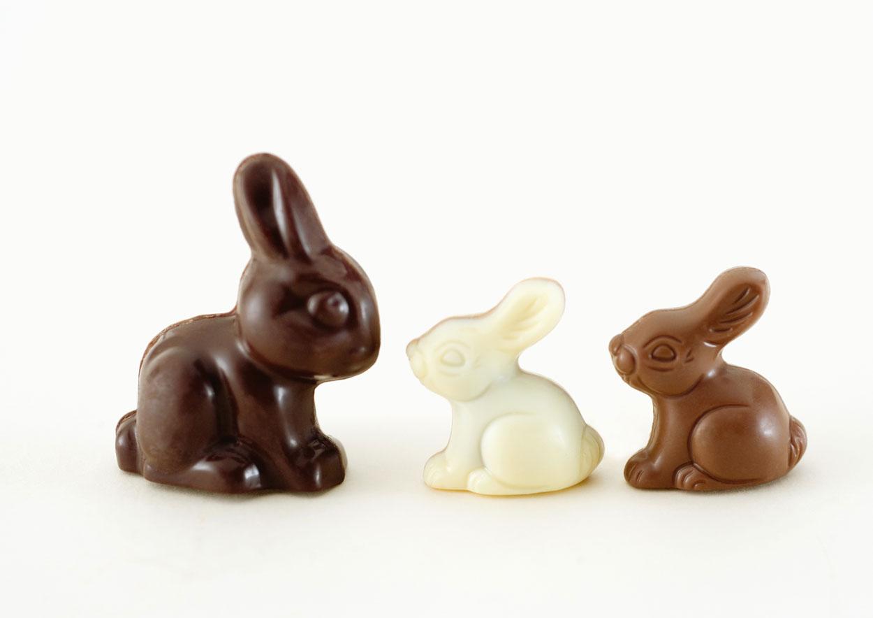 Por onde é que começa a comer o coelhinho da Páscoa?