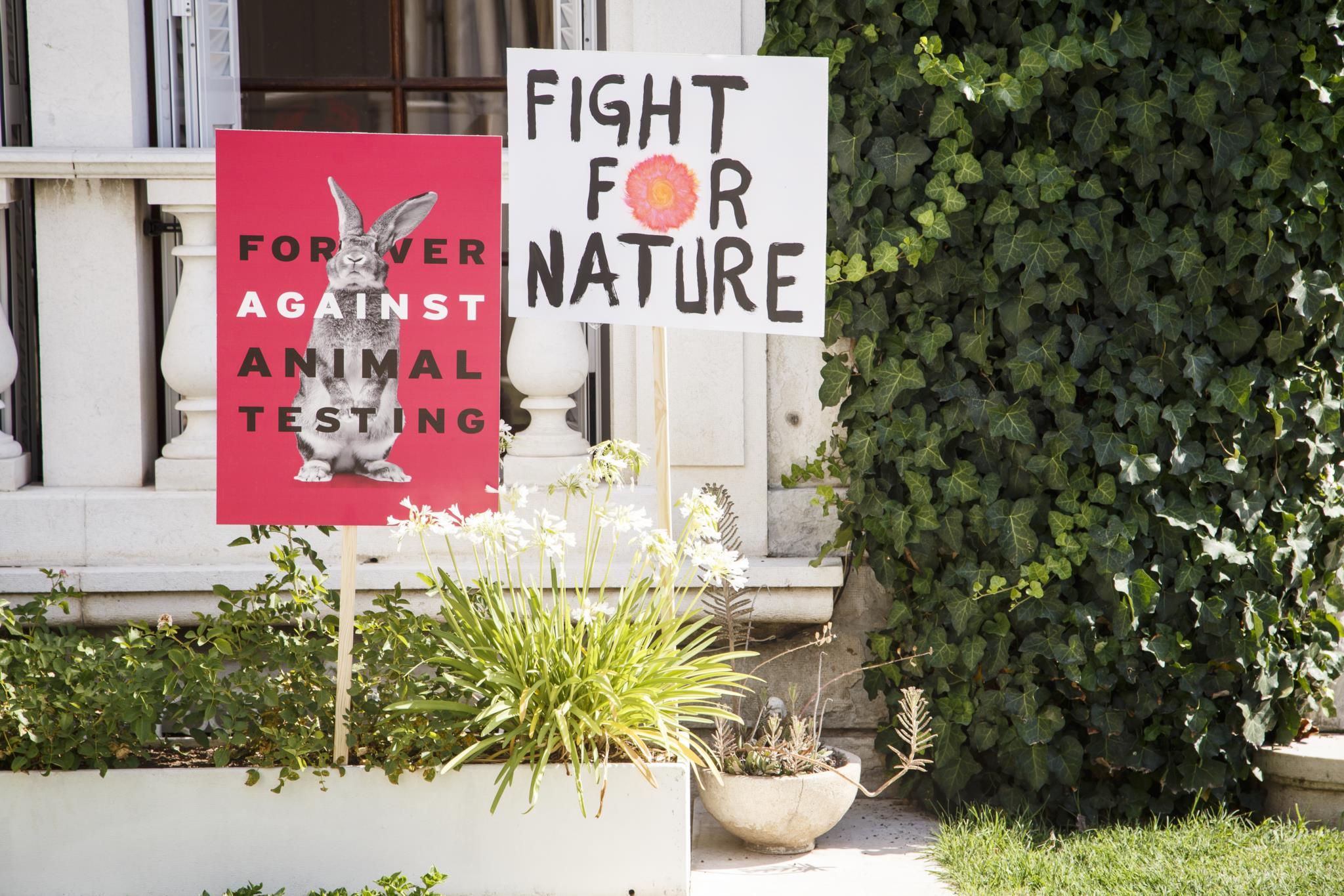 Acabar com testes em animais? São precisas oito milhões de assinaturas