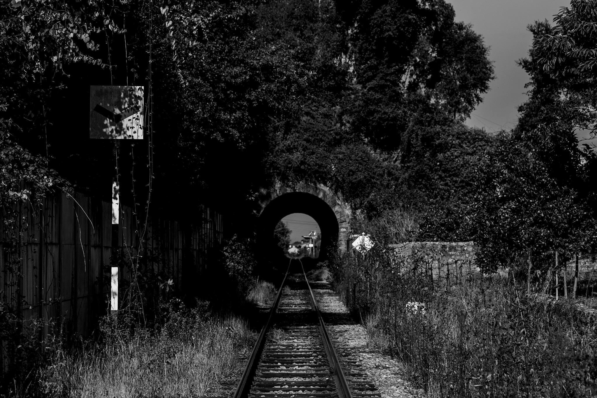 Foram construidos imensos túneis e pontes