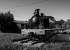 Comboio histórico dá nova vida à Linha do Vouga