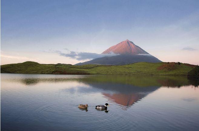 Açores: Lagoa de Capitel, na ilha do Pico.Esta fotografia foi tirada há dois anos, quando Pedro tentou apanhar o reflexo da montanha, ao amanhecer. O resultado está à vista: tons rosa, laranja e violeta, com patos a passear como bónus.