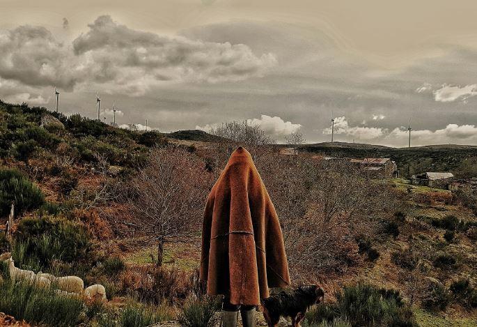 Porto e Norte: A acompanhar umas filmagens na aldeia da Anta, Paulo viu esta pastora com o seu rebanho e não resistiu a registar o momento. De uma reportagem sobre aldeias abandonadas, nasceu a fotografia.