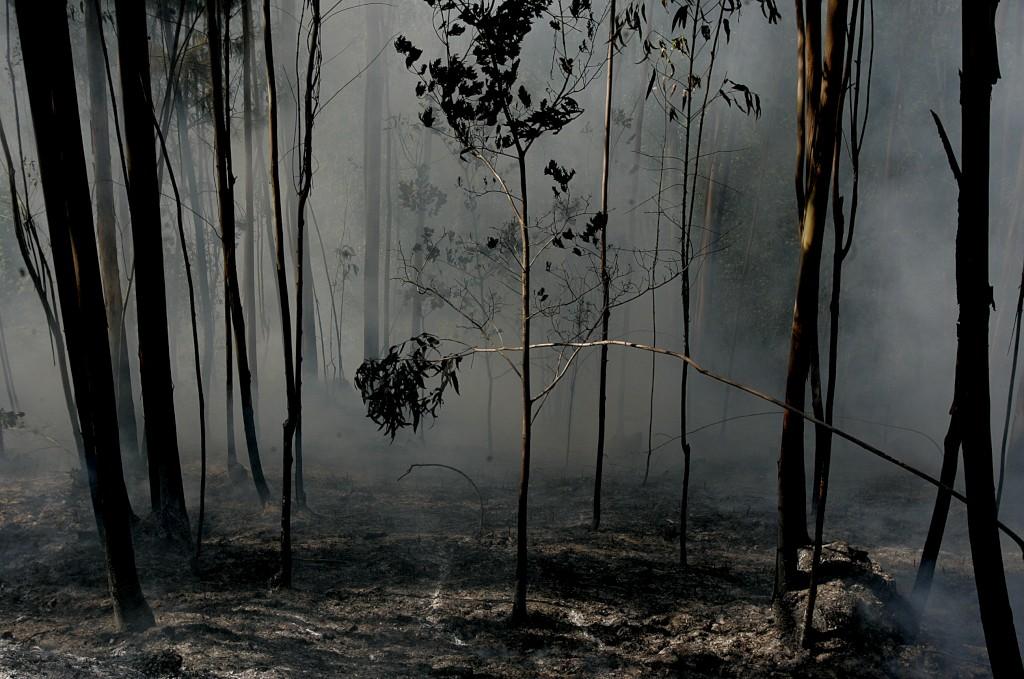 Populações viram arder os seus haveres enquanto os meios aguardavam por ordens para avançar