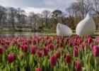 O Jardim da Europa tem sete milhões de flores mas este ano o espectáculo só tem visitas virtuais