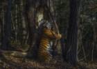 """O abraço de um tigre a uma """"floresta mágica"""": as melhores fotografias de vida selvagem do ano"""