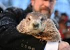 O Dia da Marmota: Punxsutawney Phil anuncia mais seis semanas de Inverno