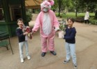 Há mesmo um coelho mágico a espalhar surpresas pelo Jardim da Estrela