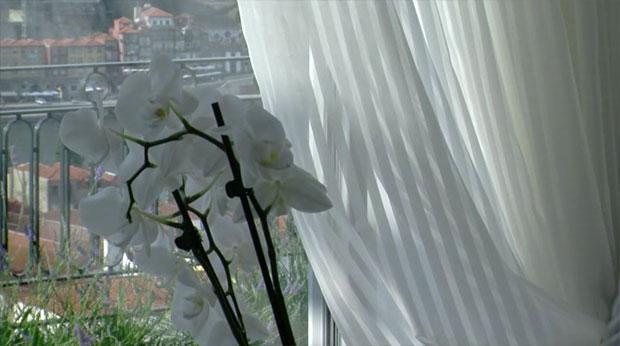 The Yeatman - Hotel vínico cinco estrelas em Gaia