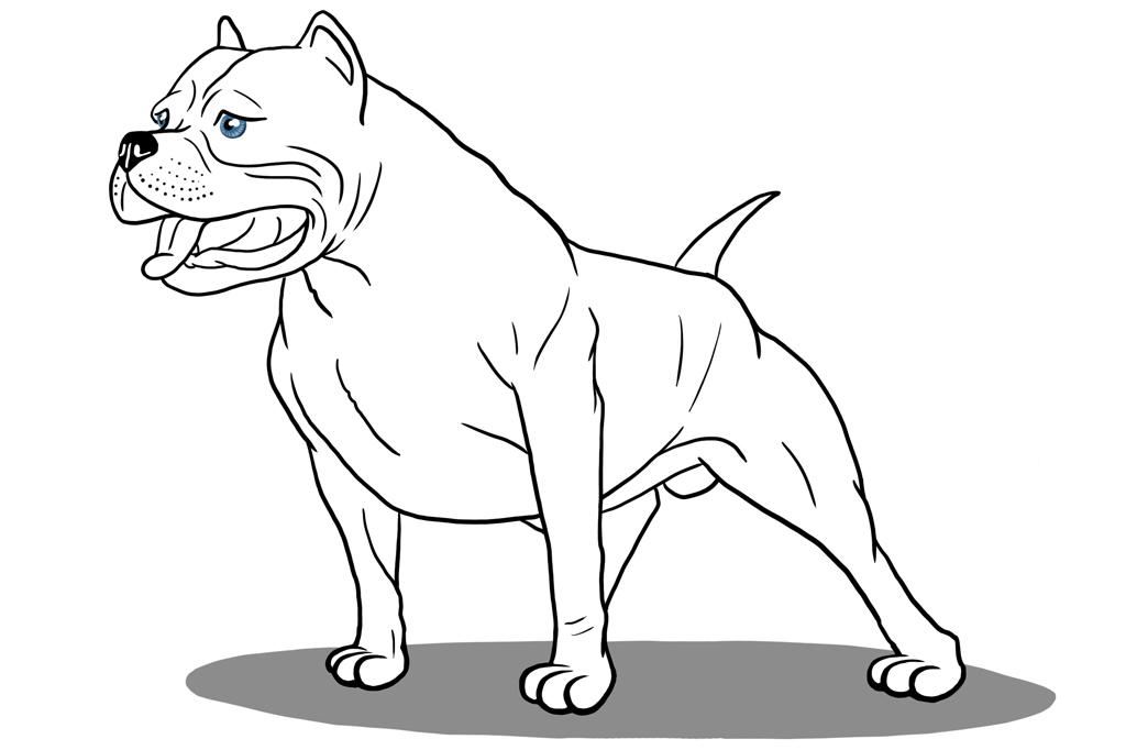 Картинки злых собак нарисованные карандашом
