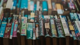 O estudo analisou os livros publicados na América de 2002 a 2012 Pexels