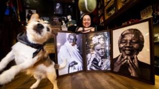 Mahatma Gandhi, Cão