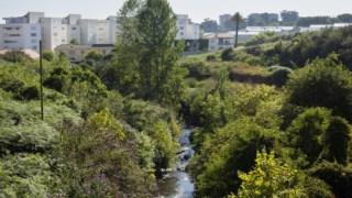 NOvas construções vão surgir na margem direita da Ribeira da Granja
