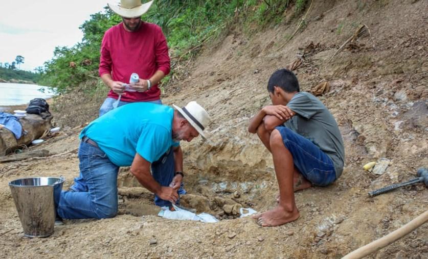 Resultado de imagem para Criança brasileira descobre fóssil de crocodilo gigante pré-histórico que habitou Amazónia