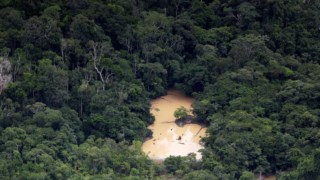 Imagens aéreas mostram a desflroestação ilegal na floresta amazónica