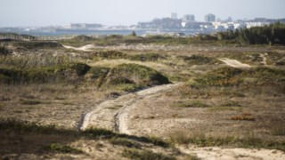 Criada em 1957, a ROM é a mais antiga reserva natural do país