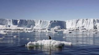 Manta de gelo antártico