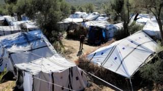 ,Refugiado