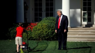 Cortador de grama