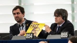,Deputado ao Parlamento Europeu