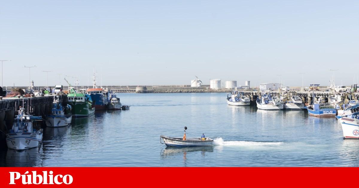 Comissão ambiental contra intenção de pôr terminal de contentores de Leixões no porto de pesca
