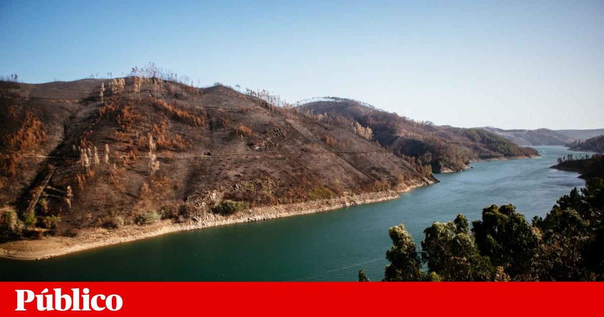 Cientistas alertam para impacto dos incêndios de 2017 no abastecimento de água a Lisboa