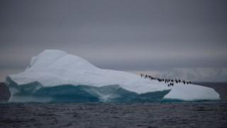 ,Iceberg