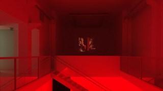 Em <i>Roi Soleil</i> (2017), performance na Galeria Graça Brandão em Lisboa, todos éramos transformados em cúmplices da morte de um homem que víamos em confronto com o abismo da sua vida