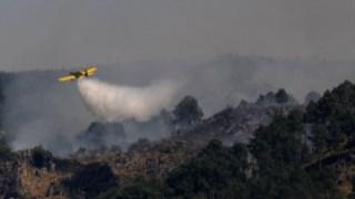 proteccao-civil,estado,sociedade,governo,incendios-florestais,florestas,