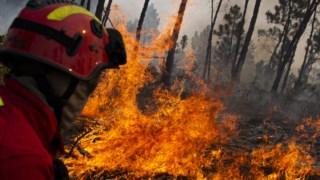 incendios,proteccao-civil,bombeiros,sociedade,algarve,incendios-florestais,
