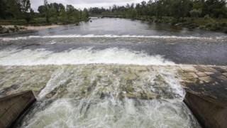 rio-mondego,cheias,local,agricultura,agua,