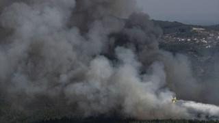 proencaanova,incendios,proteccao-civil,bombeiros,sociedade,incendios-florestais,