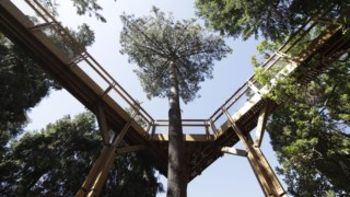 cultura,museu-serralves,parque-serralves,culturaipsilon,serralves,ambiente,