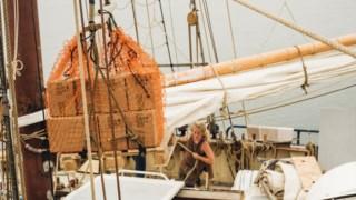 comercio,alimentacao,vinho,ambiente,alteracoes-climaticas,mar,