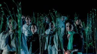 amalia-rodrigues,teatro-municipal-sao-luiz,teatro-nacional-d-maria-ii,marco-martins,teatro,culturaipsilon,