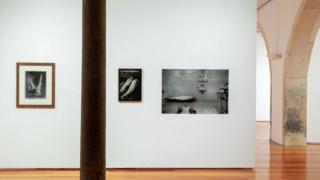paulo-nozolino,juliao-sarmento,fotografia,critica,artes,culturaipsilon,
