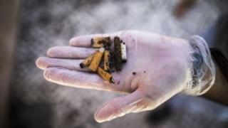 pan,tabaco,asae,sociedade,ambiente,poluicao,