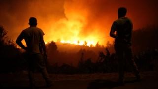 incendios,proteccao-civil,bombeiros,viseu,sociedade,incendios-florestais,