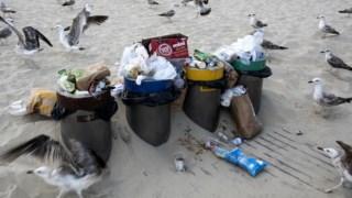 plastico,sociedade,ambiente,poluicao,oceanos,mar,