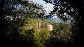 recursos-naturais,camara-setubal,quercus,local,ambiente,biodiversidade,