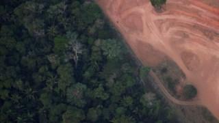 mundo,ambiente,brasil,america,florestas,amazonia,