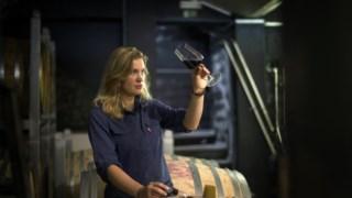 vinicultura,vinhos,fugas,agricultura,alentejo,