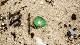 quercus,fugas,porto,turismo,ambiente,praias,